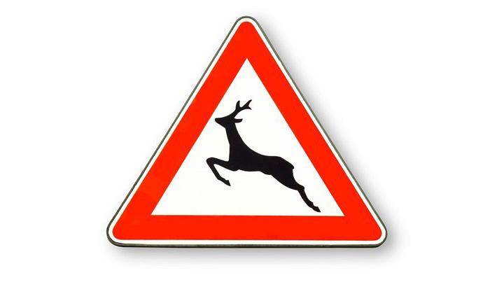 Dopravní značka Pozor zvěř!